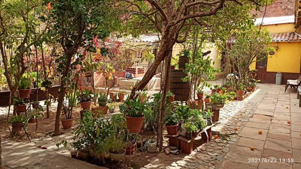 Jardín del HOSTAL VILLA SOFÍA